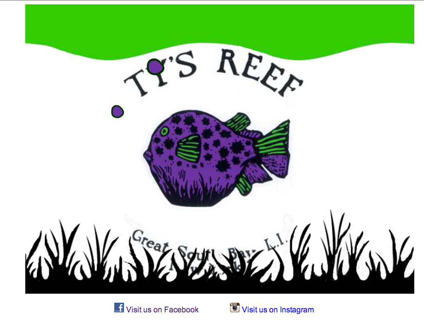 Tys Reef Home page Design