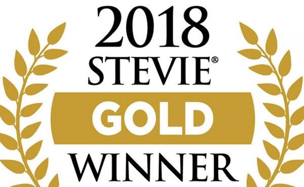 Network9 wins Gold Stevie Award-Logo