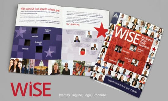 WISE-Identity-and-Brochure-design Network9 wins a Gold Stevie Award